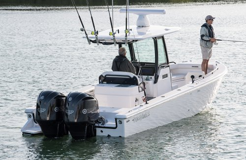 Review of the Everglades 273cc